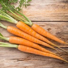 Zanahoria Ecologica peso aproximado bandeja 500 grs