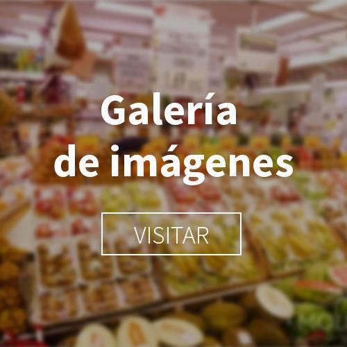 Galería Molinaseca