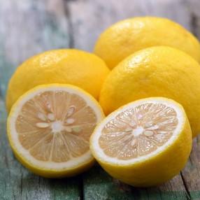 Limones Ecologico peso aproximado bolsa 1 kg