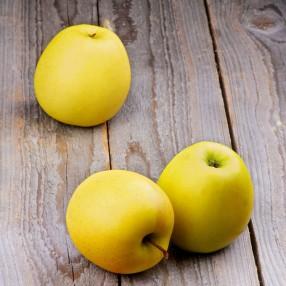 Manzana Golden peso aproximado bandeja 1,1 kg